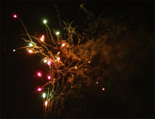 20100724_2.jpg