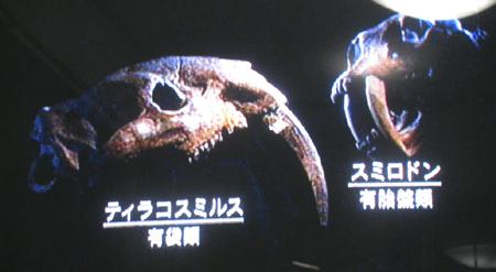 20100719i5.jpg