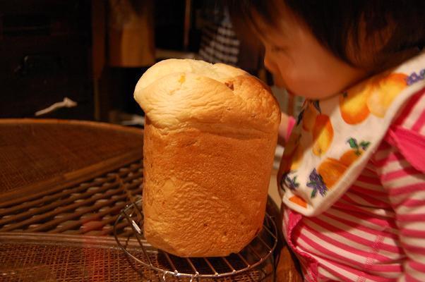 20091030_コンポタパン