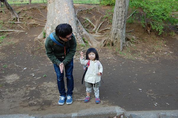 20110429_参拝5