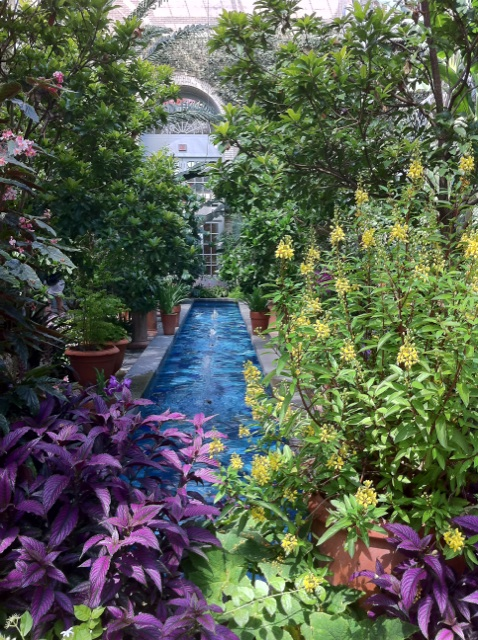 IMG_4076ワシントンdc 植物園