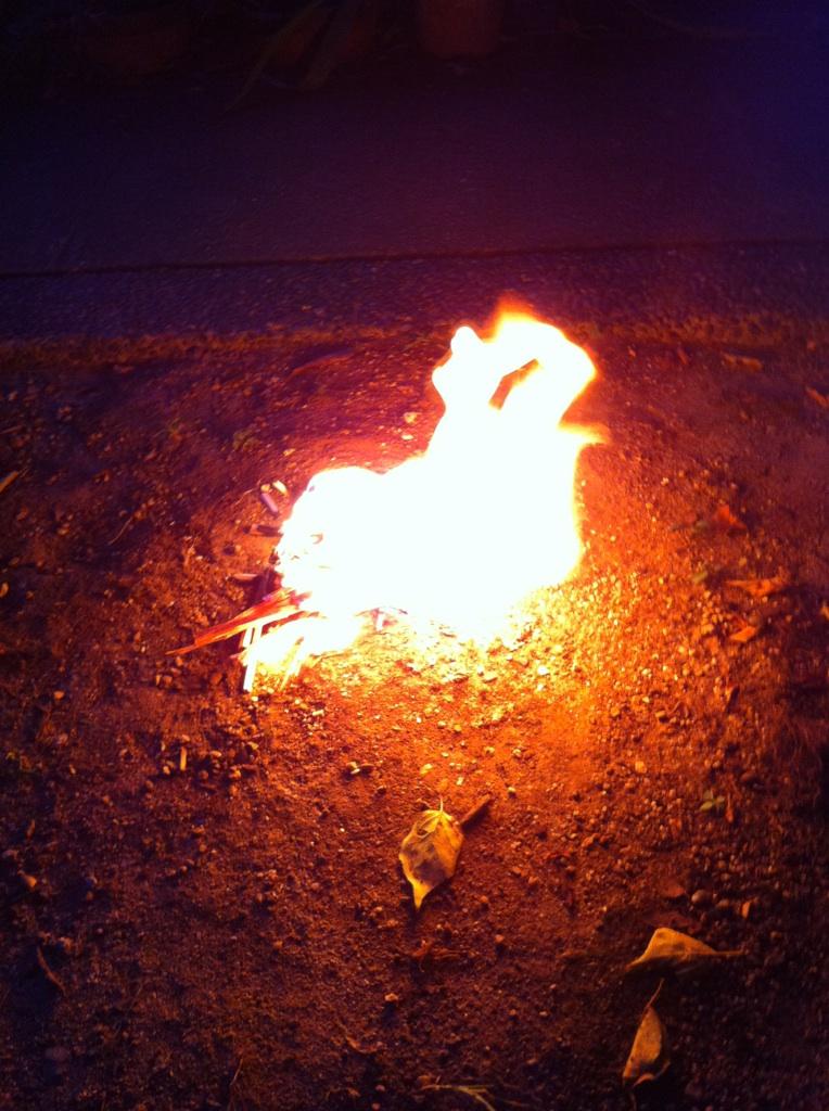 IMG_6963迎え火