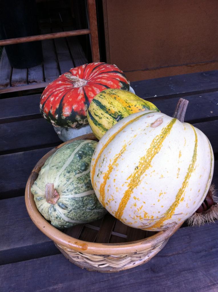 IMG_8548かぼちゃ