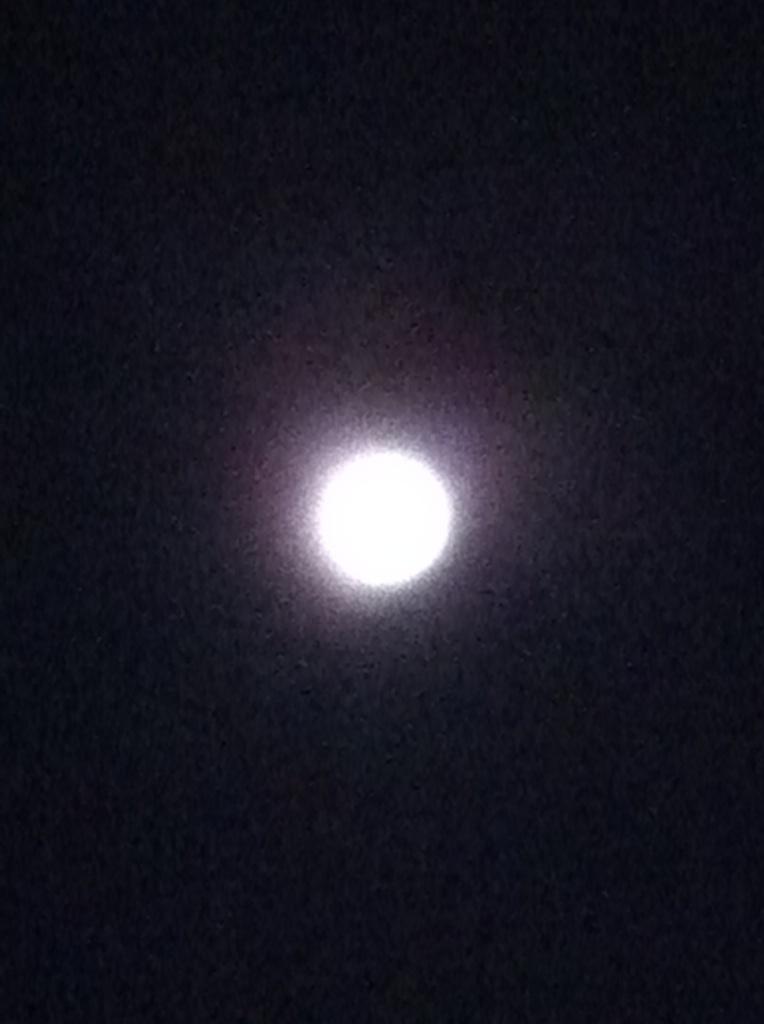 IMG_1815十三夜のお月様