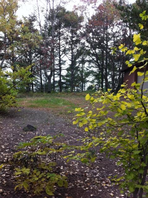 IMG_7716山荘の庭