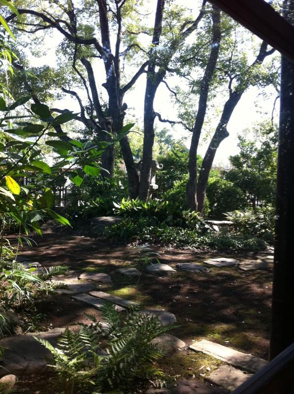 IMG_8353喫茶の庭