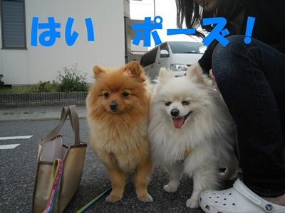 23-5-31玲斗譲渡DSCN0687