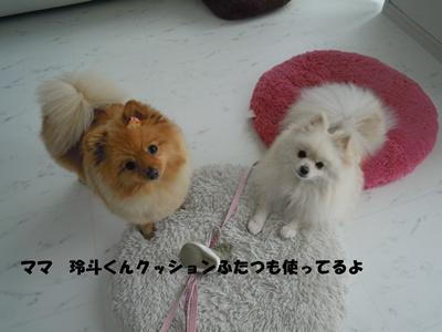 23-5-31玲斗譲渡DSCN0730