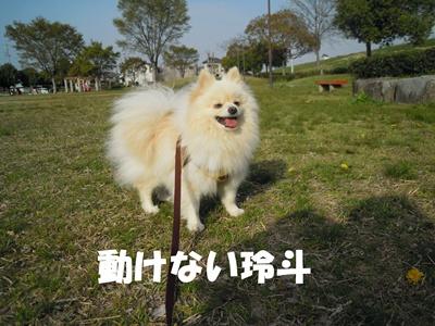 23-5-31玲斗譲渡DSCN0683