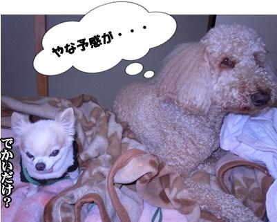 23-6-7がんもちぃ057