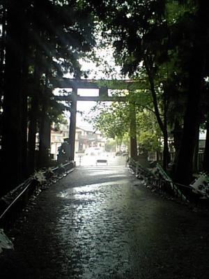 20110528本宮大社3.JPG
