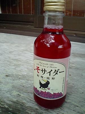 20110528熊野サイダー.JPG