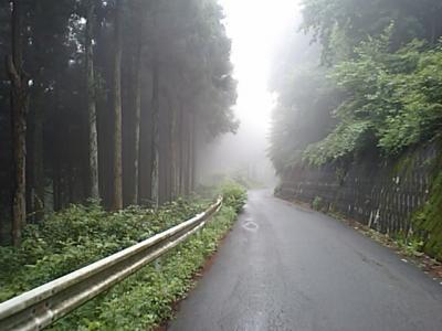 20110619グリーンライン.JPG