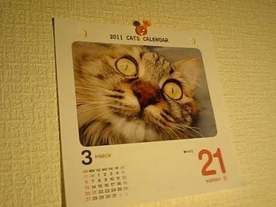 20110906わらける春分の日.JPG