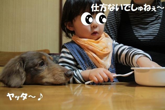 IMG_4139-1.jpg