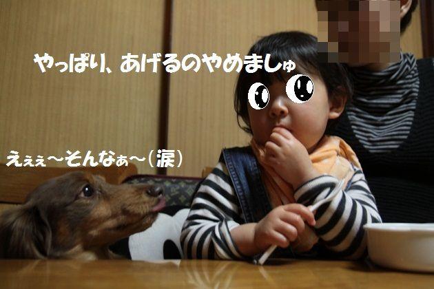 IMG_4140-1.jpg