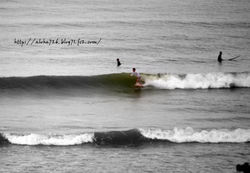 surfer レギュラー