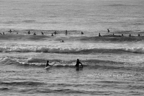 海に帰ってきたloco surfer