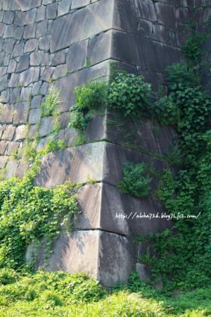 大阪城 堀 光と影