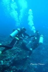 水深10m付近