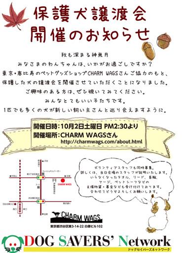 satooya_kokut_fc2i.jpg
