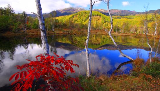 秋・まいめの池