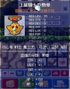 9・19上級騎士の勲章