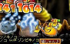 9・19毒キノコ