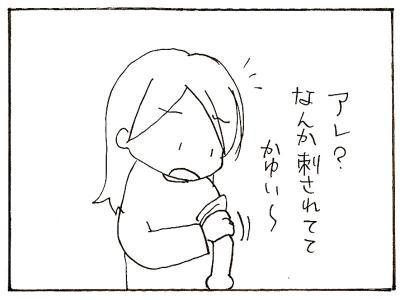 411-2.jpg