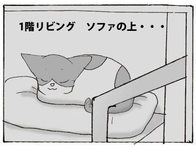 436-5.jpg