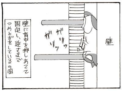 438-4.jpg