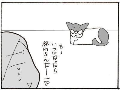 442-4.jpg