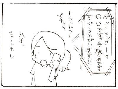 453-3.jpg