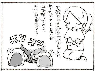 459-3.jpg