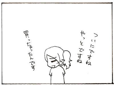 461-3.jpg