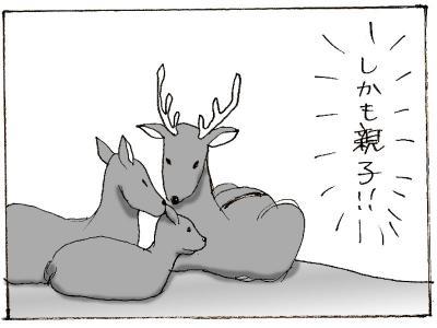 466-4.jpg