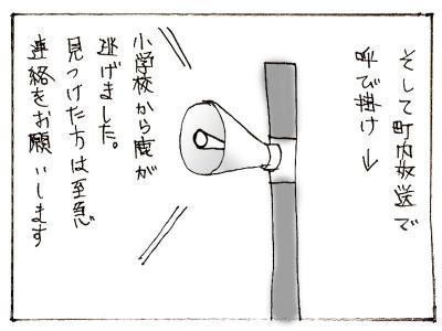 467-2.jpg