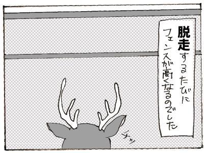 467-4.jpg
