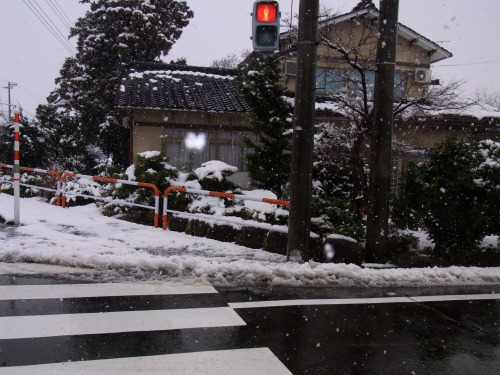 屋根雪対策