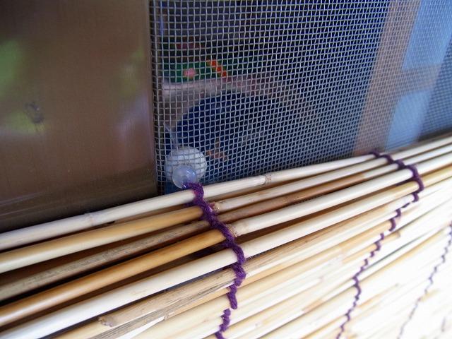すだれの紐を網戸にやわらかい留具「プニョットピン」を巻き付け1129