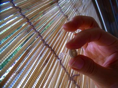 すだれの紐を網戸にやわらかい留具「プニョットピン」d