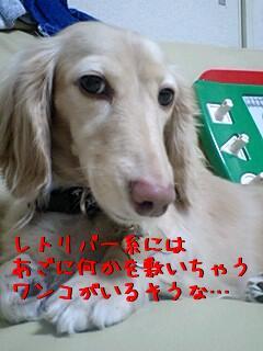 gEYmoZ_G.jpg