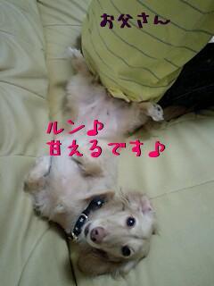 k8DfmBU_.jpg