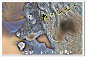 230525-4(1).jpg