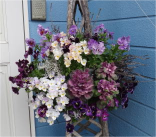 wall basket pansy