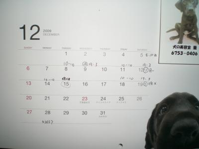 12月カレンダー