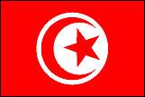 チュニジアの国旗a