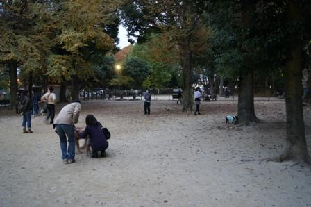 DSC01151.jpg