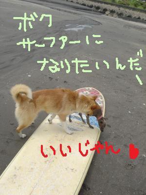 DSC02157_convert_20110525003649.jpg