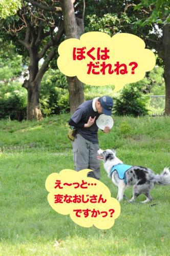 20110710_07.jpg
